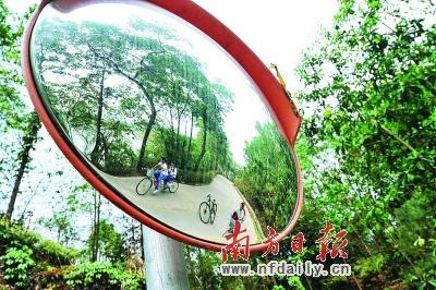 也是3号珠三角文化休闲绿道支线,包括连接线在内全长34公里,于2009年6