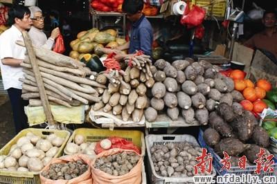 南方日报讯 (记者/郭彪 通讯员/李欣)据平湖海吉星国际农产品物流园