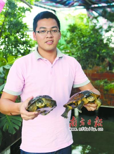 莫枢伟 苏仕日/莫枢伟将家里的天台改造成仿天然的养龟池。苏仕日摄