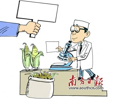 农业部解释转基因食品检测内幕 争议是发展过程