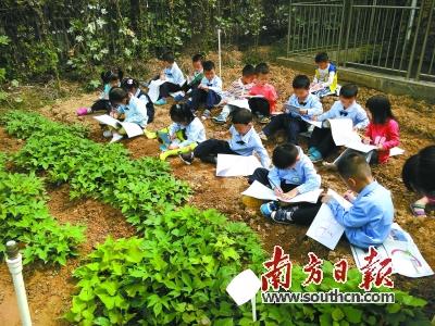 孩子在田地上画画.