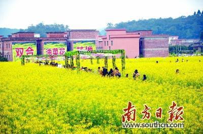 """南方日报:发展乡村旅游应注重""""本土"""""""