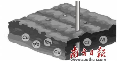 材料呈多孔纳米网络结构,其不仅能够固定土壤中盐基阳离子,提高土壤ph