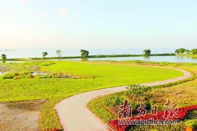 磨碟河,茅洲河,长安新河生态廊道以及滨海景观廊道)和10个邻里公园