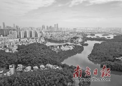 惠州将建设休闲宜居型森林小镇,生态旅游型森林小镇和岭南水乡型