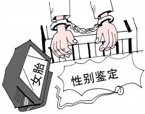 翟振武_翟振武 人口政策